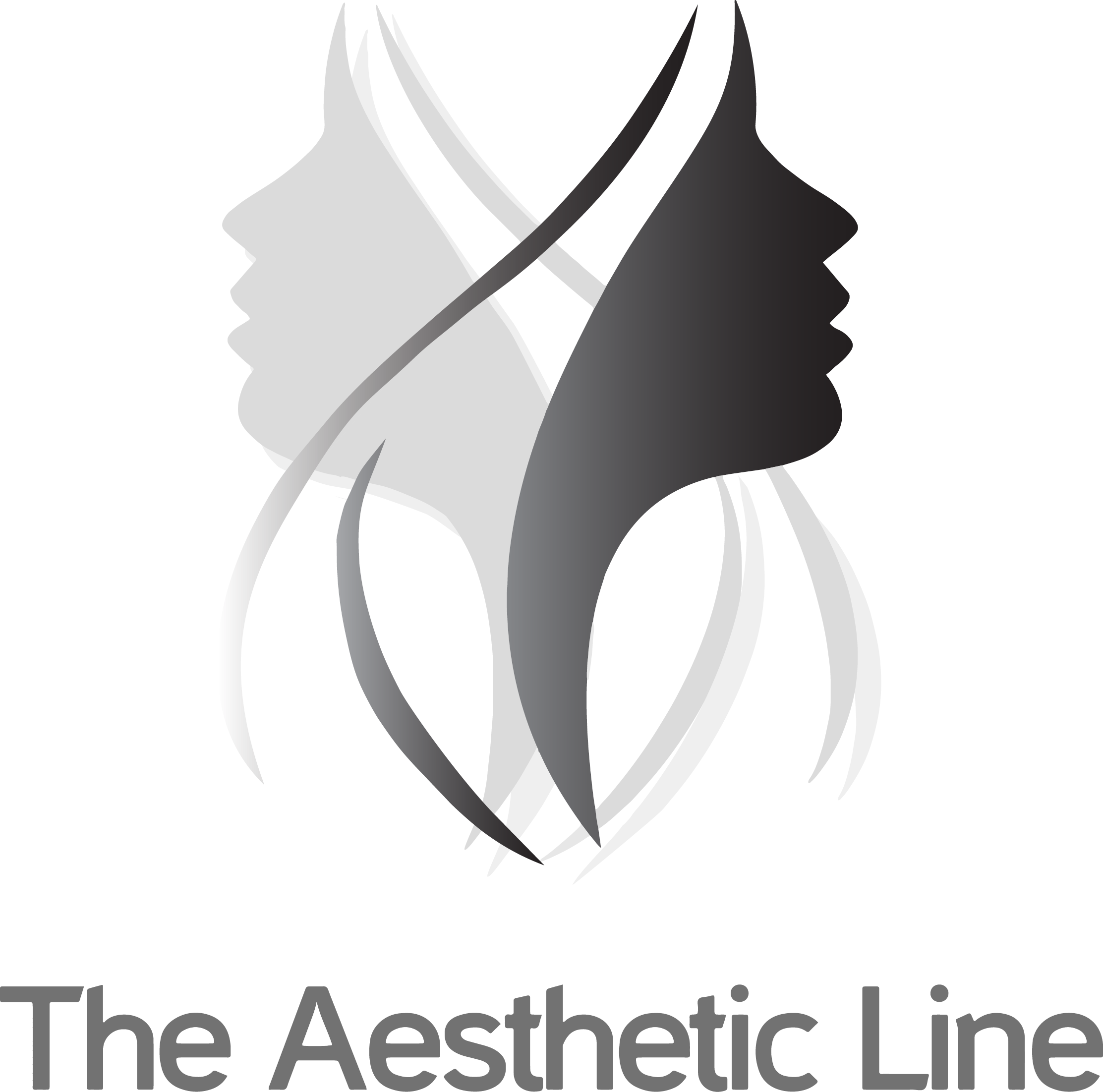 TheAestheticLine